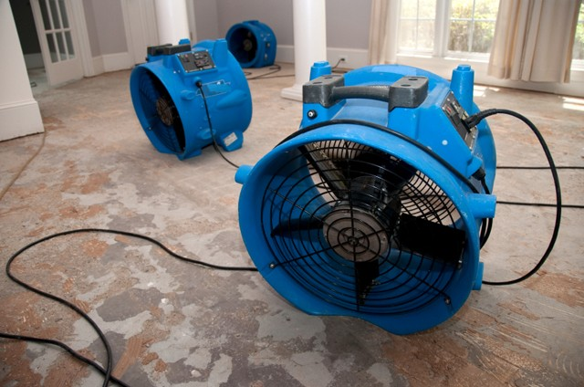Specialist Drying Services – Water Damage Drying