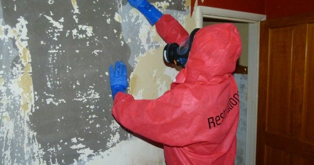 What is a Restoration Company & How Do They Work?